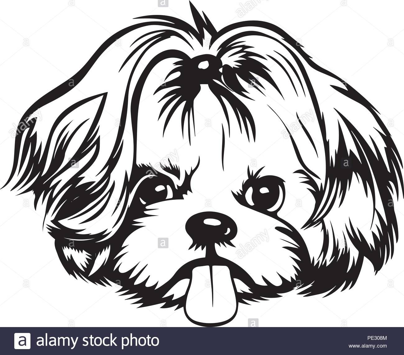 Download This Stock Vector Shih Tzu Dog Breed Pet Puppy Isolated Head Face Pe308m From Alamy S Library Of Millions Of In 2021 Shih Tzu Puppy Shih Tzu Dog Puppy Art