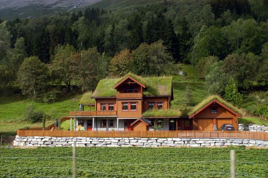 sod roof - Google Search