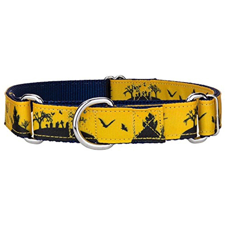 Country brook design halloween night ribbon martingale dog