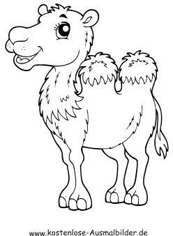 kamel ausmalbild - ausmalbilder für kinder | ausmalbilder, ausmalen, ausmalbilder tiere