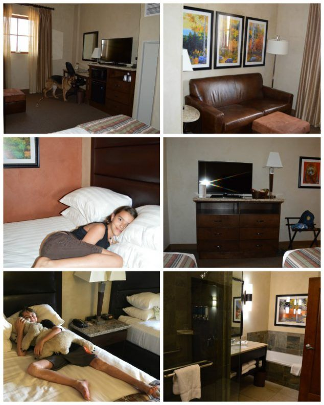 Drury Plaza Hotel Santa Fe Pet Friendly And In Beautiful Downtown