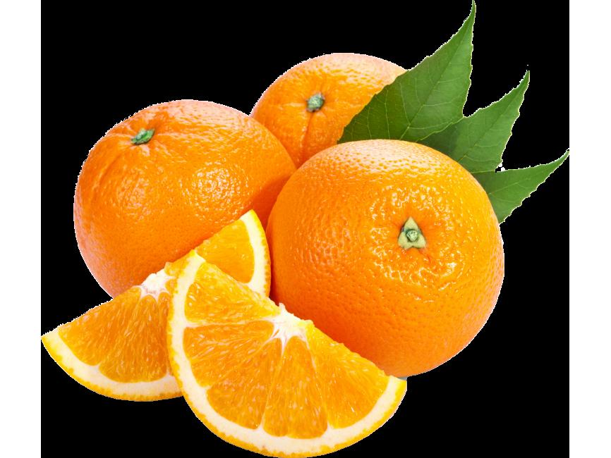 Orange Slice Transparent Png Image Freepngimage Com Meyve Mandala Saglikli Yasam