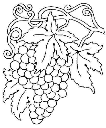 Las Uvas Son Moradas Coloring Page Twisty Noodle Frutas Para