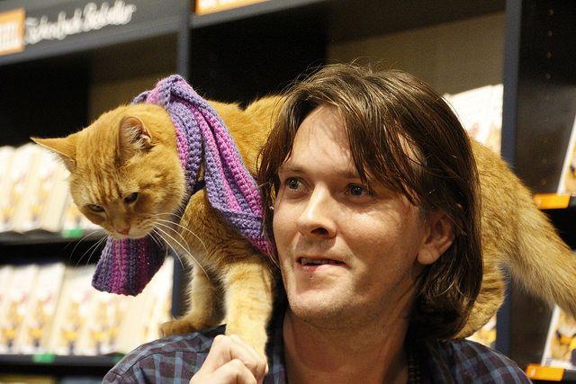 James Bowen Und Bob Der Streuner In Koln Cats Street Cat Bob A Cat Named Bob