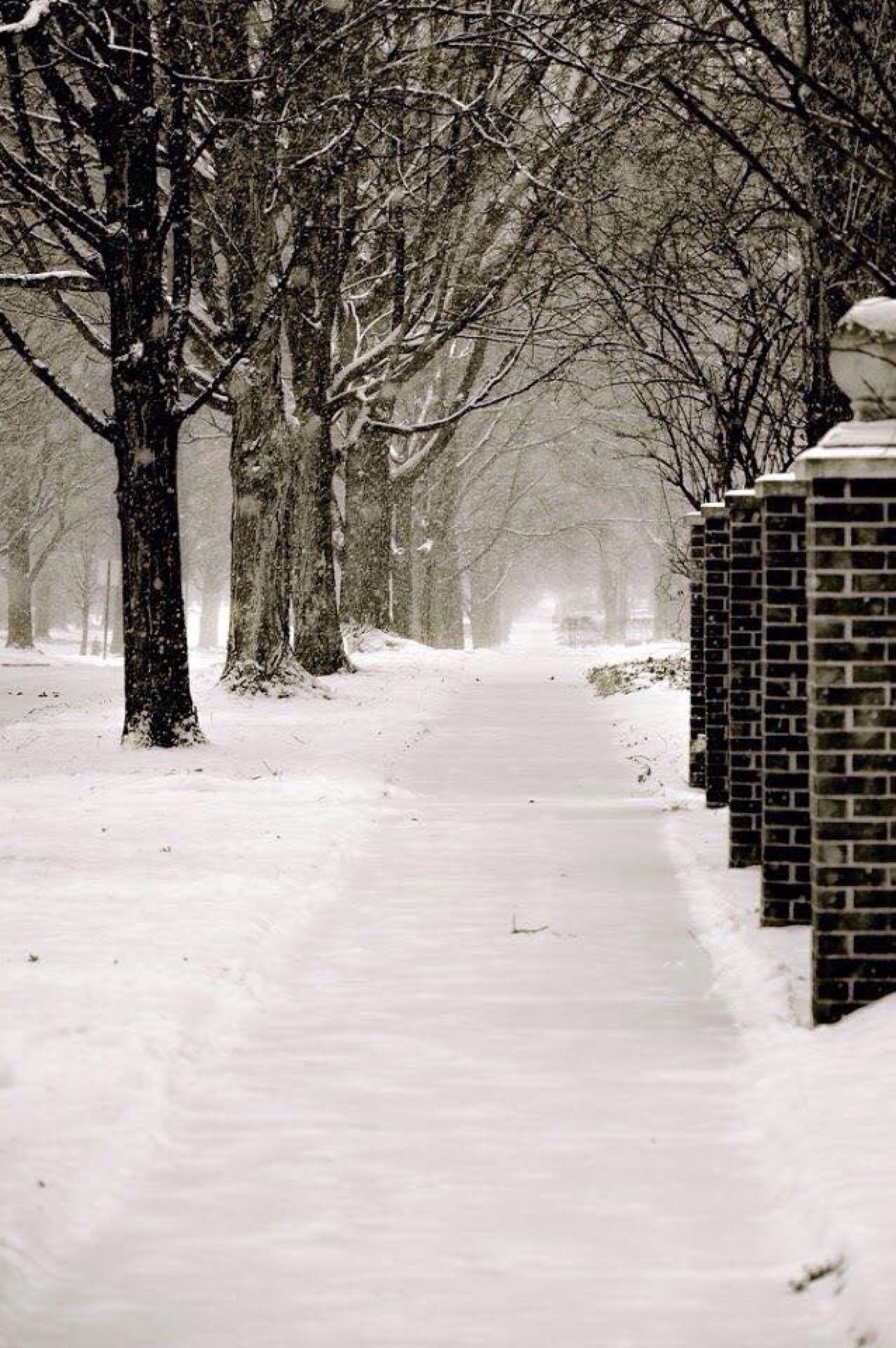 2019 Weiße Weihnachten.Moment S Winter In 2019 Weiße Weihnachten Winter Und Weihnachten