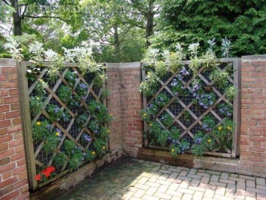 Balkon Sichtschutz mit vertikalem Garten Günstig