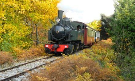 Un aller-retour en train à vapeur pour enfant ou adulte ou pour 2 adultes et 2 enfants dès 7,50 € à Velay Express: #RAUCOULES 7.50€ au lieu…