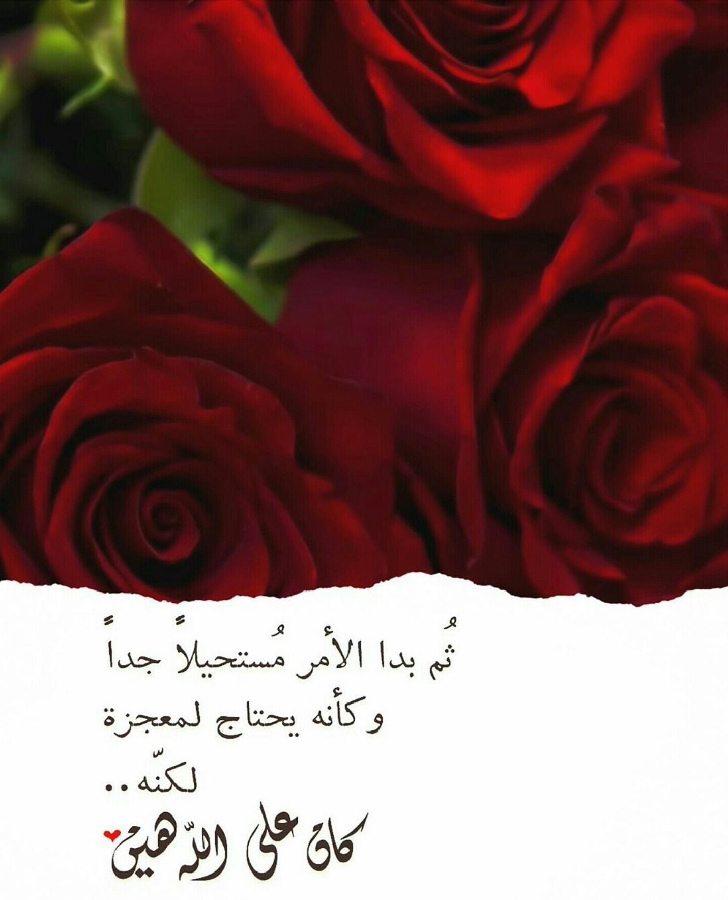 Pin by صورة و كلمة on مواعظ ☘️ خواطر إسلامية ️ Flowers