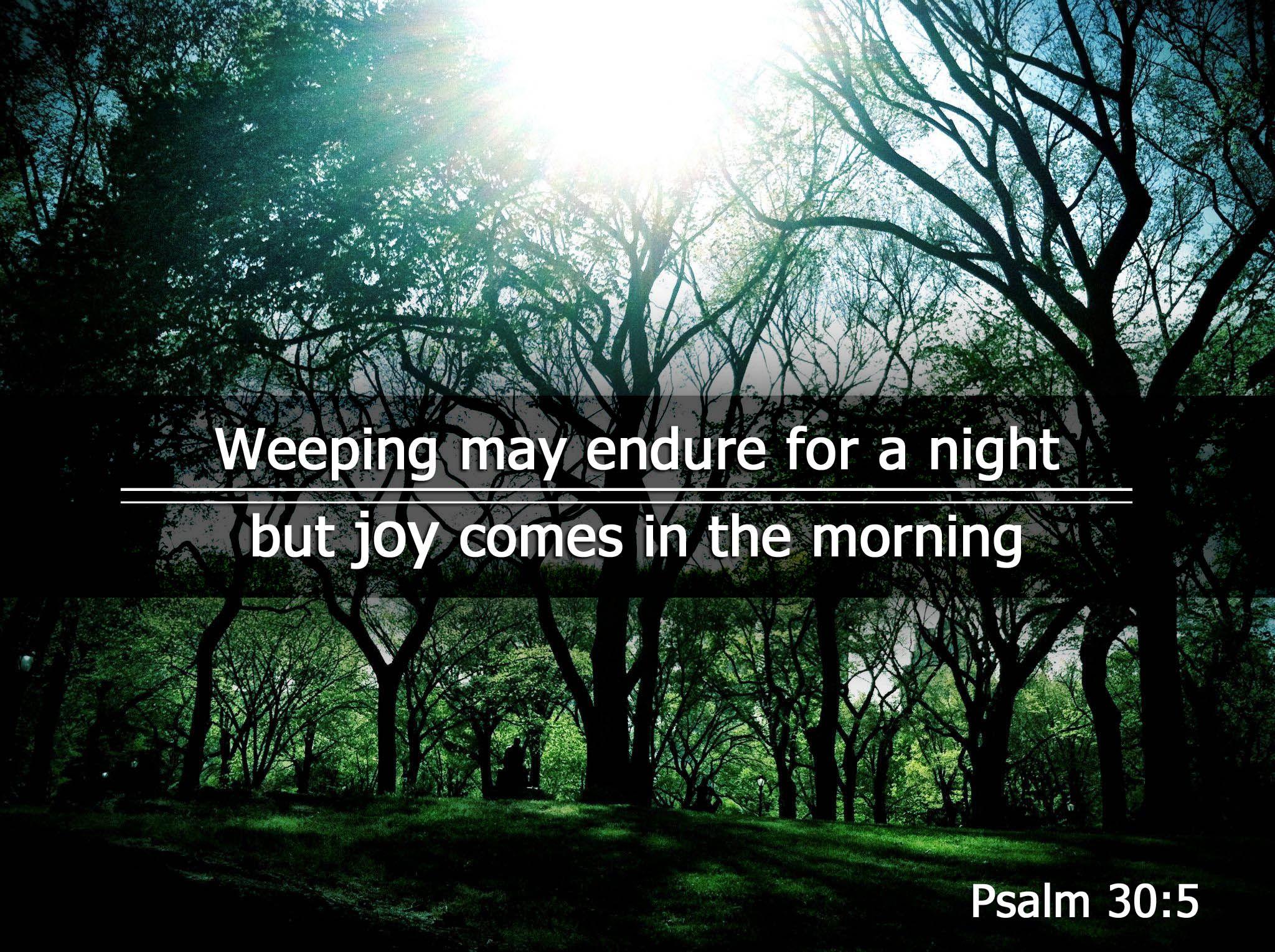 Psalm 6 30