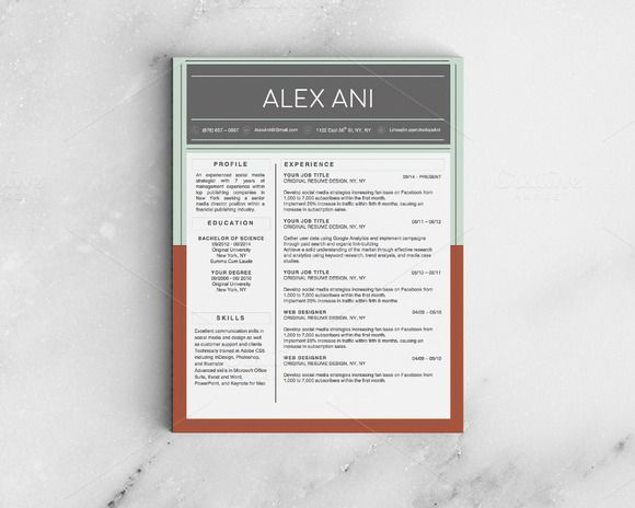 Alex Ani Modern 2-Page Resume Cool resumes, Shops and Beautiful - 2 page resume