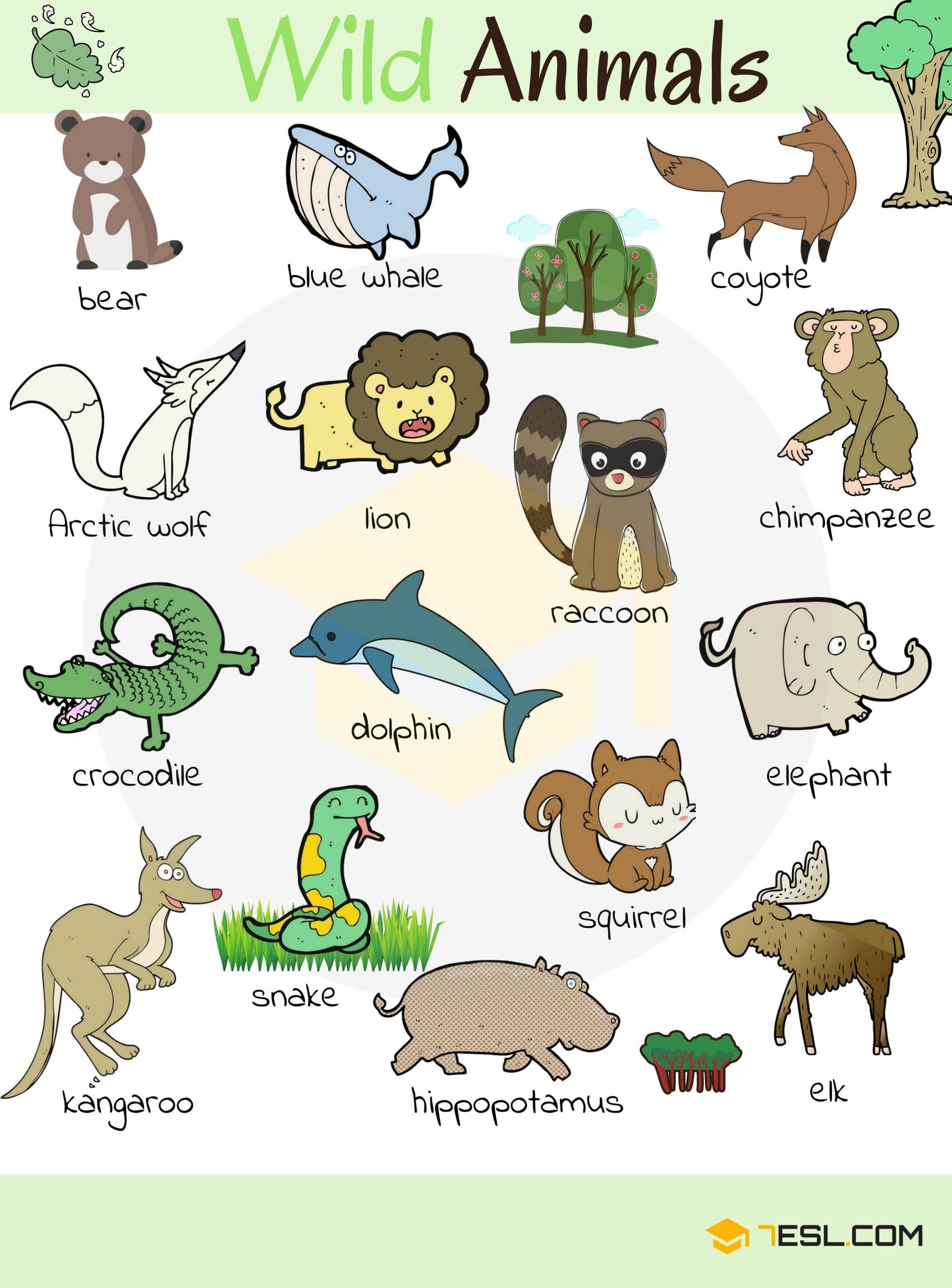 Farm Animals Pictures With Names Background 1 HD