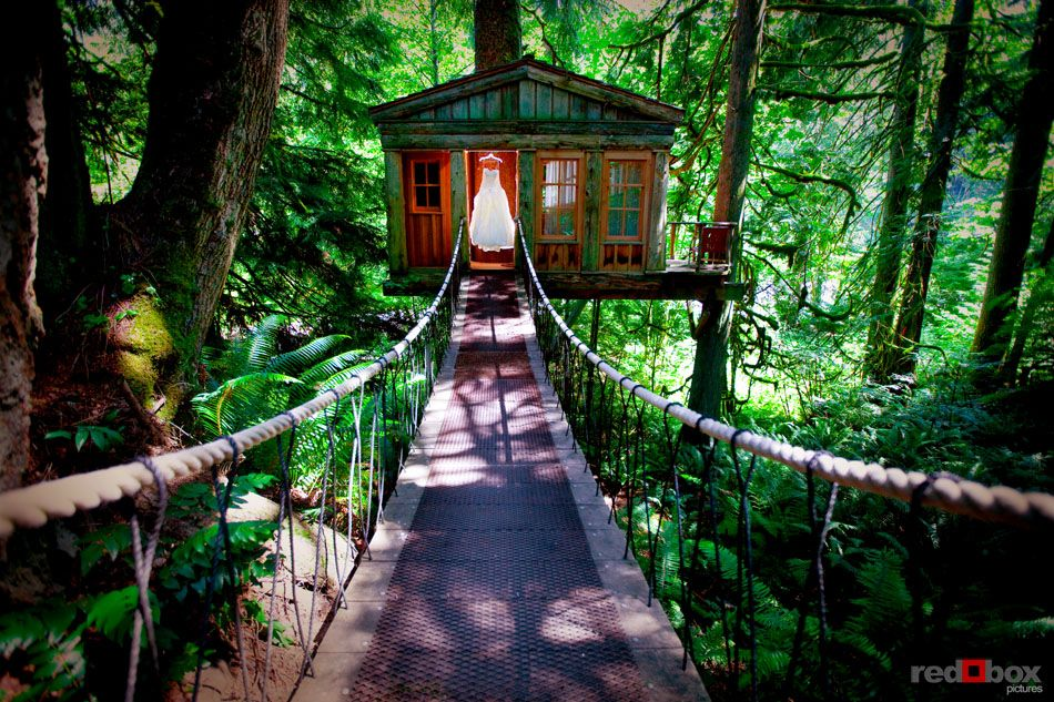 Top 26 Coolest Places To Get Married In The Us Treehouse Wedding Venues And Weddings