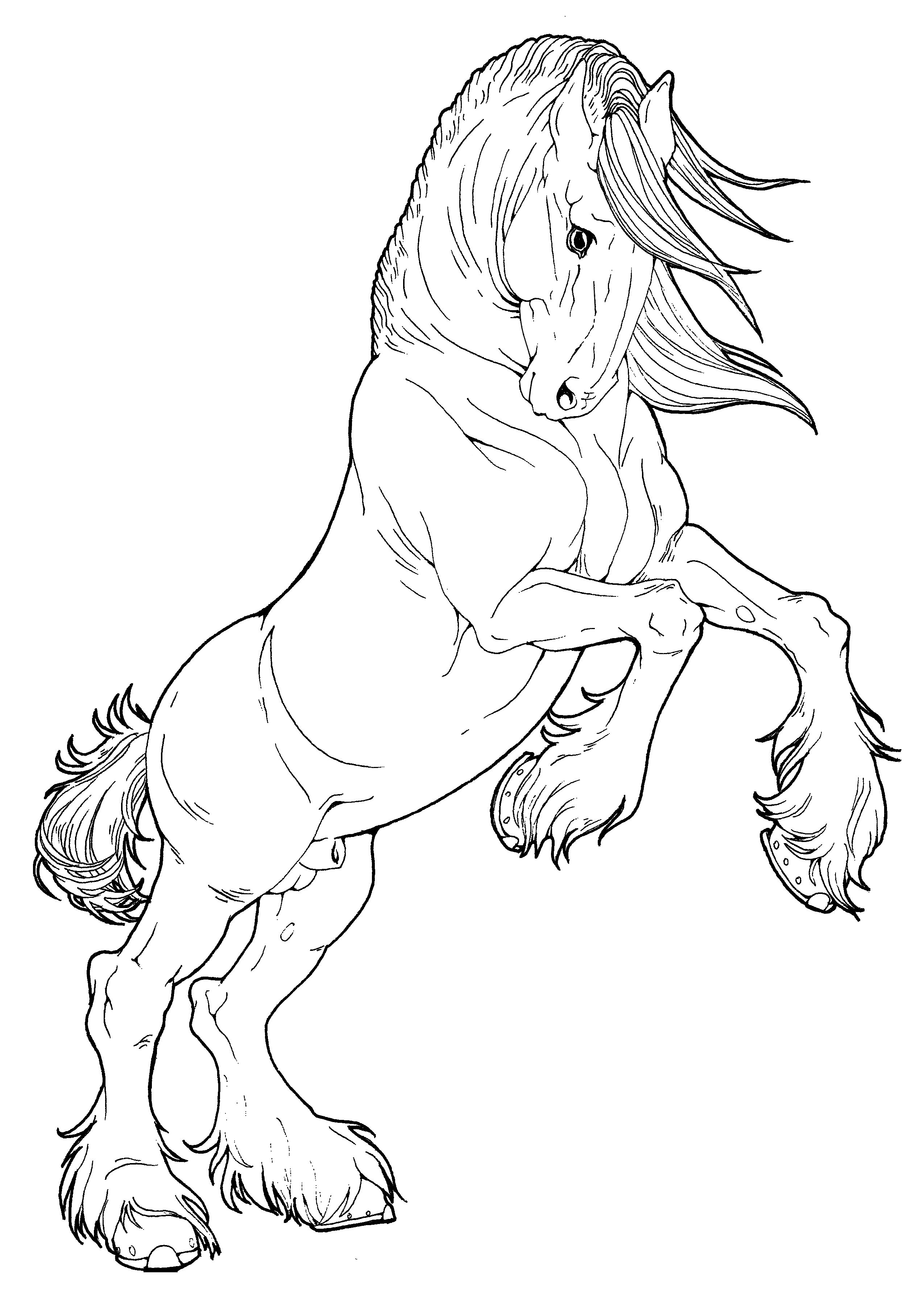 Pin By Eddie Corbett On My Works Xd Horse Coloring Pages Horse Drawings Horse Coloring