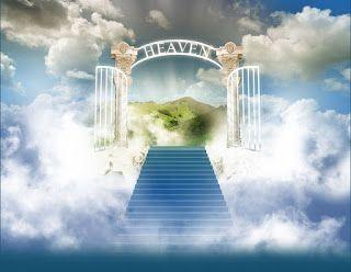 HAFEESTO'NOVA KONSEPT (#TIM): DIFFERENCE BETWEEN HEAVEN AND PARADISE
