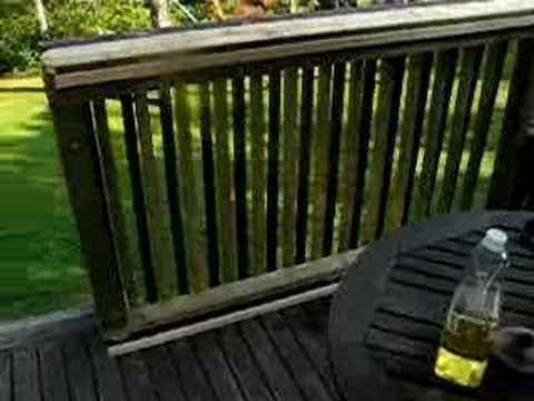 Easy Sliding Gate For Your Deck Youtube Deck Gate