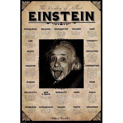 Albert Einstein (Wisdom, Quotes) Art Poster Print