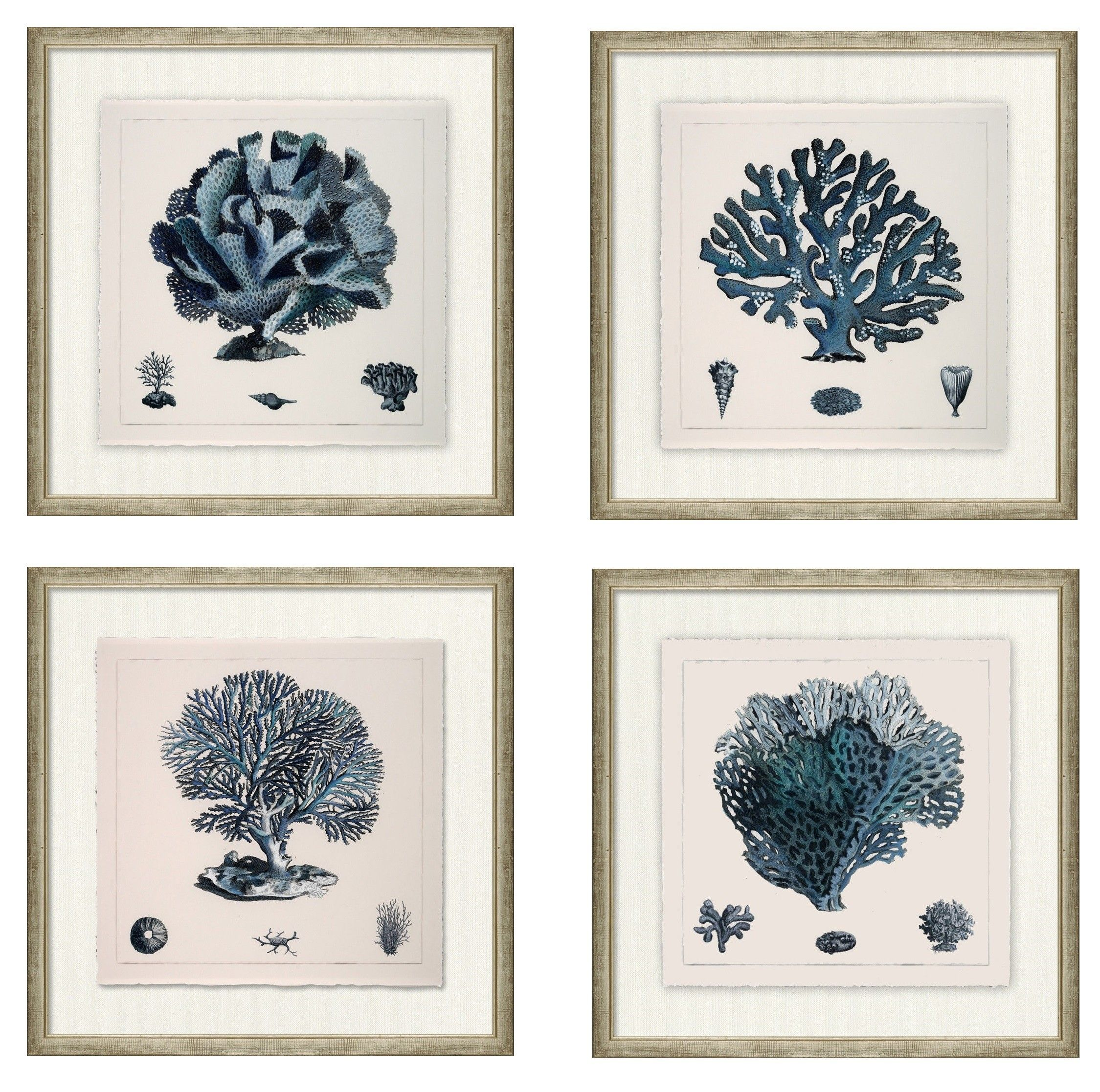 THE WELL APPOINTED HOUSE   Luxury Home Decor  Set Of Four Blue Coral Wall  Art