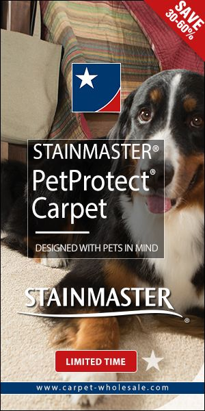 STAINMASTER® PetProtect carpet SAVE 3060 Limited Time