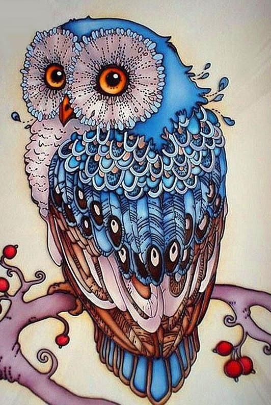 Diamond Painting Full Square DIY 5D Night Owls Pattern Canvas Wall Art Decor New