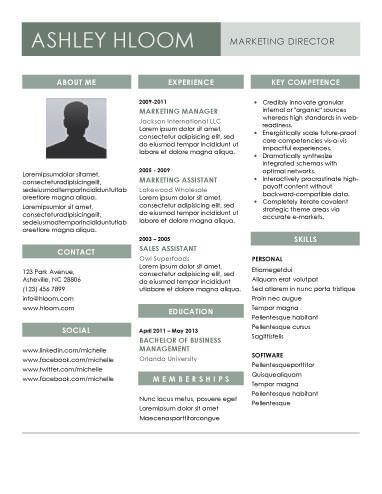 3 column resume format column format resume resume format