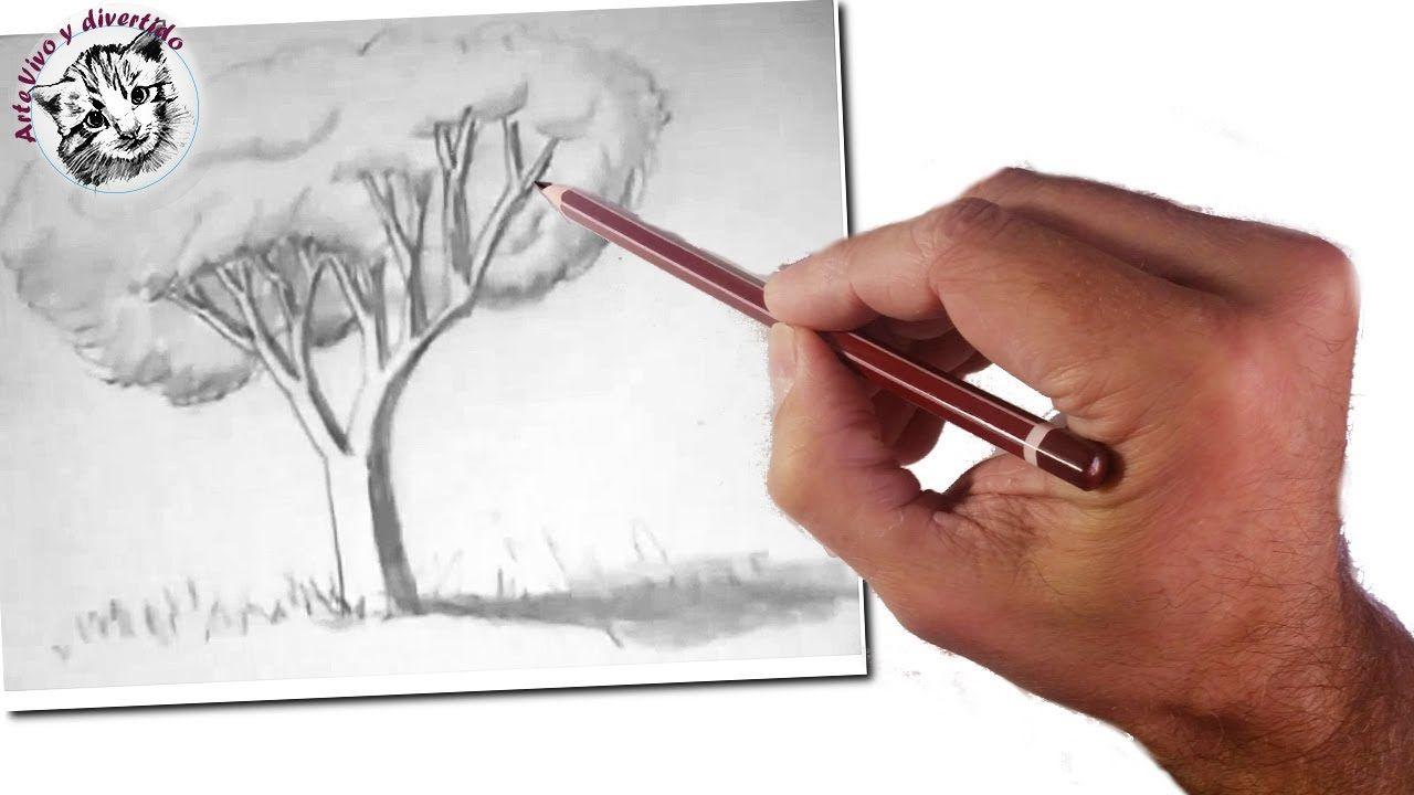 Como Dibujar Con Lapiz Clases De Dibujo Videos De Dibujo Arte Vivo Y Divertido Como Dibujar Paso A Arboles Dibujos A Lapiz Ensenar A Dibujar Arbol A Lapiz