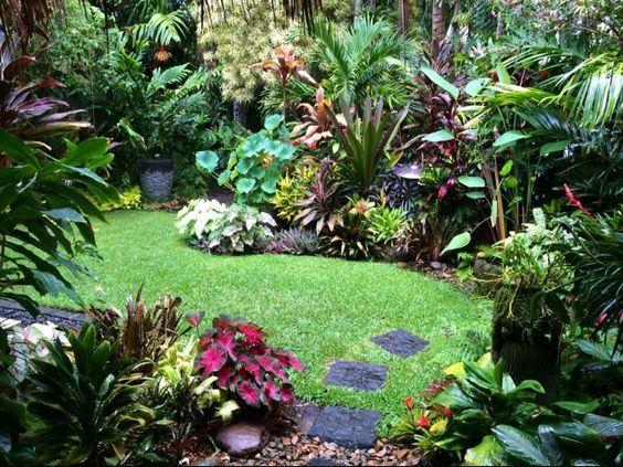 Small jungle style gardens jungle gardens gardens and city for Jungle garden design ideas