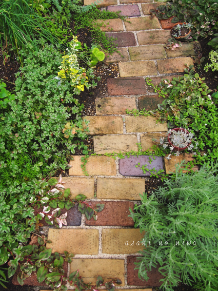 Shade Garden Design Side Yards