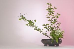 arranjo floral japones, como fazer
