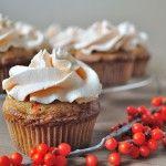 cupcakes cu catina si mousse de catina