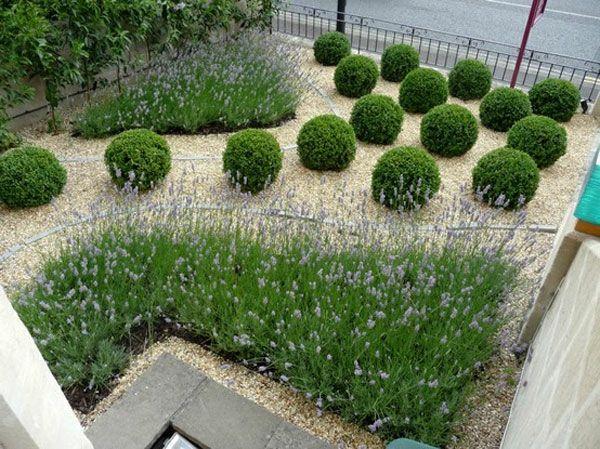 Kugeln Aus Pflanzen Für Ein Interessantes Garten Design ... Ideen Fur Das Gartendesign
