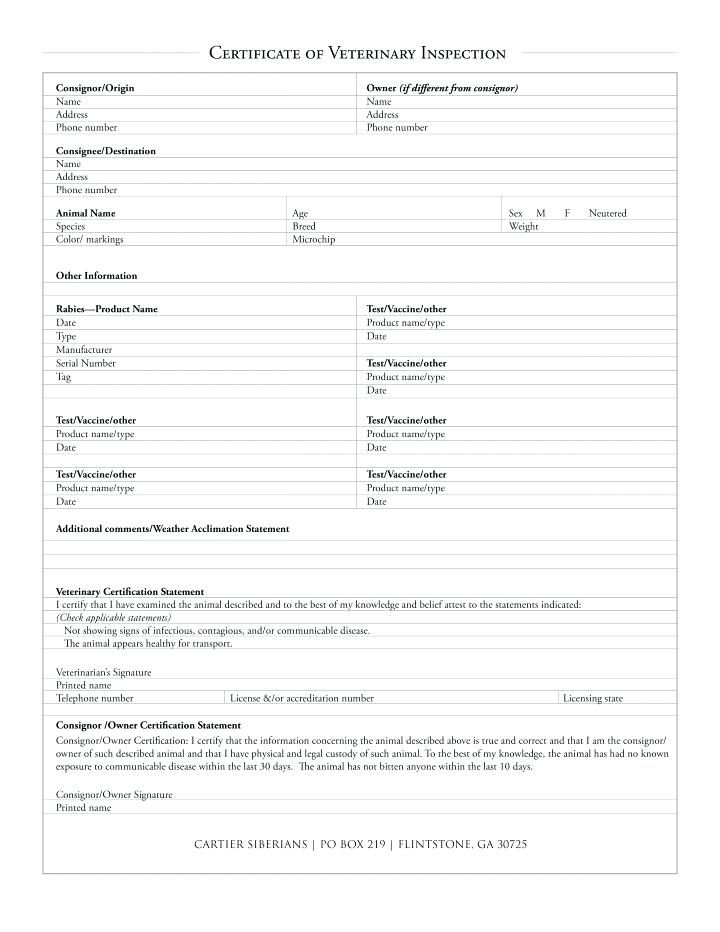 Free Invoice Templetes 28 144 Free Invoice Templates For 94 Veterinary Invoice Template .