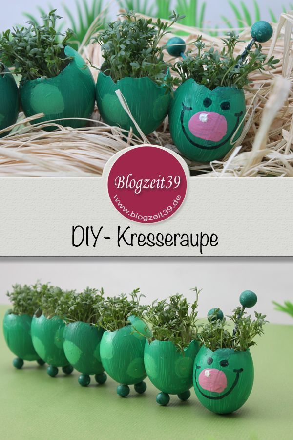 DIY cress caterpillar as an Easter decoration & adventure Easter egg hunt -  This week I fetched my craft box from the basement and made a cress caterpillar out of eggs with my - #Adventure #amp #Caterpillar #Cress #DECORATION #DIY #diygardenplants #EASTER #egg #flowergardenideasinfrontofhouse #gardendecordiy #gardendesignlayout #gardenideasdiy #hunt #secretgarden