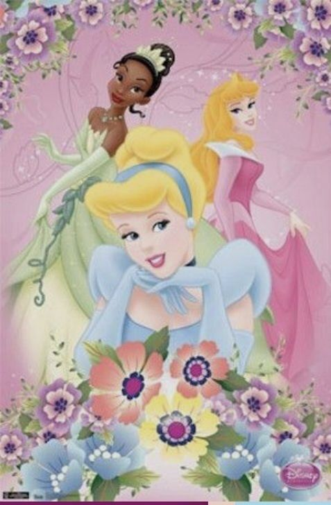 NEW 24X36 PRINT IMAGE PHOTO -SW0 DISNEY PRINCESS POSTER FOLLOW YOUR HEART