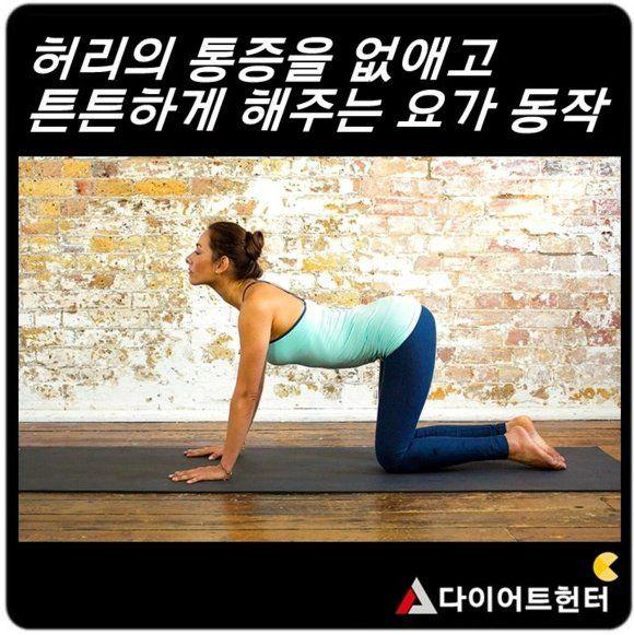 <허리 통증 없애고 튼튼하게 해주는 요가동작>  - 큰 무리없이 허리와 주변근육의 근력을 강화하고 유연성을 향상시켜주는 요가동작 모음입니다. - 각자의 유연성에 맞게 동작을 실시하시고 호흡을 멈추지 마세요 - 천천히 정확한 동작으로 실시하세요(완성된 자세에서 5초간 유지)    많이 소개했던 브릿지 동작~!! 부담없이 하기 좋죠!