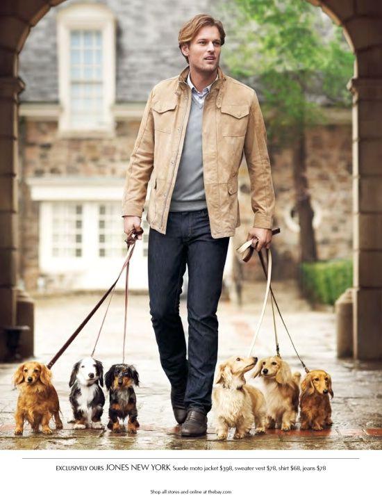 Walking the doxies Dachshund dog, Dachshund, Dogs