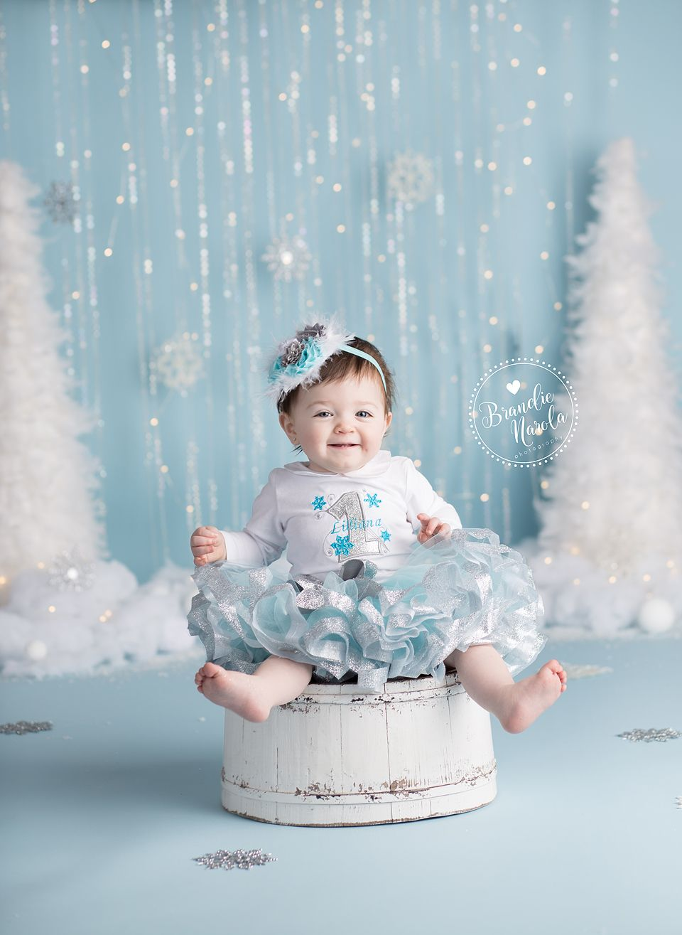 Winter Wonderland Baby Cake Smash Photos By Brandie Narola