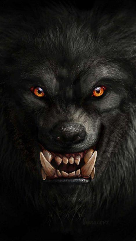 Warewolf Iphone Wallpaper Iphonewallpaper Iphone Wallpaper Android Androidwallpaper Iphonebackground Android Wallpaper Wolf Wallpaper Wolf With Red Eyes