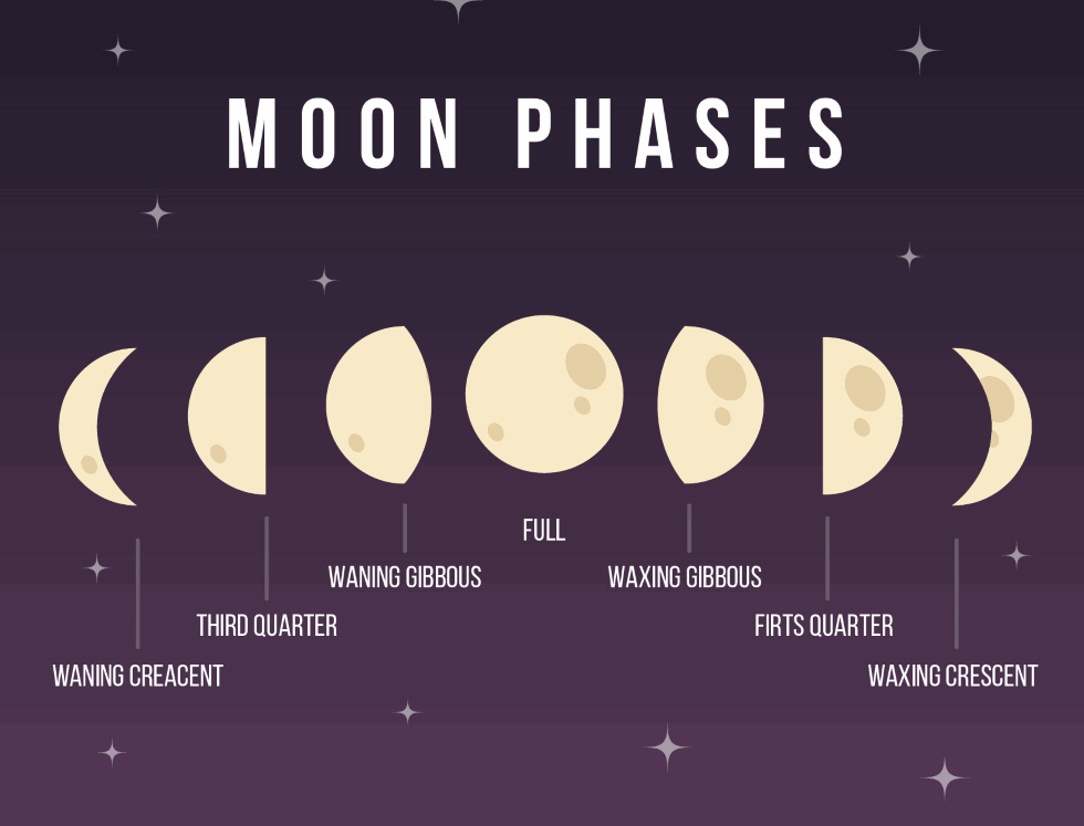 Moon goes through 8 phases: - A new moon - A solar eclipse