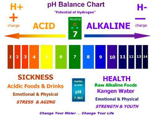 ph colours universal indicator Google Search – Ph Chart