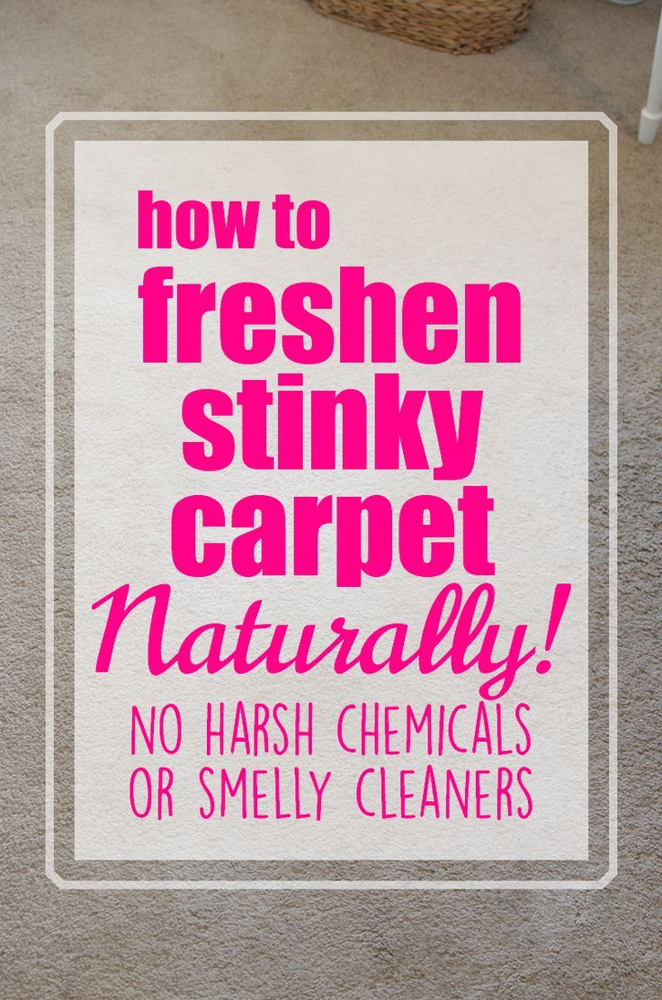 How To Freshen Carpet Naturally No Harsh Chemicals