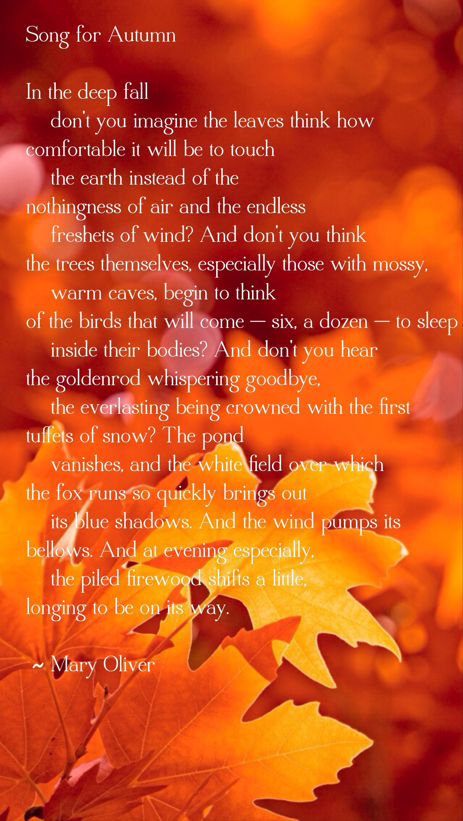 Short and beautiful poems about autumn 47