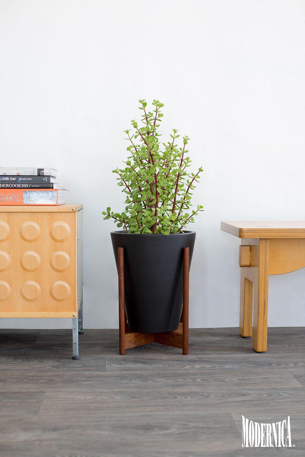 modernica case study® small funnel w stand modern ceramic  - modernica case study® small funnel w stand modern ceramic planters