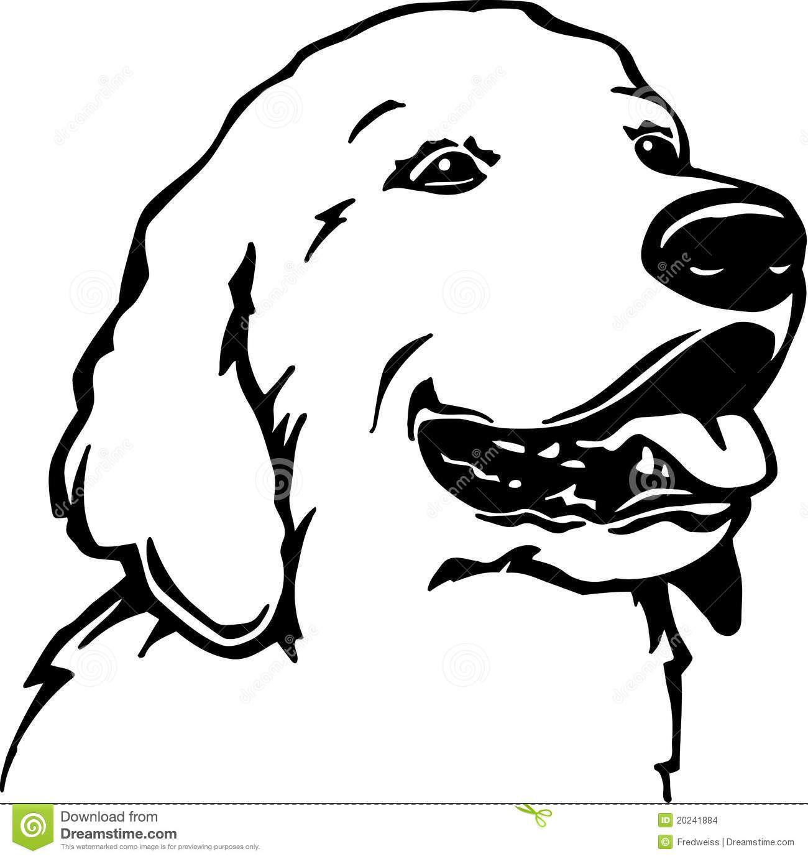 ausmalbilder hunde golden retriever | tier ausmalbilder