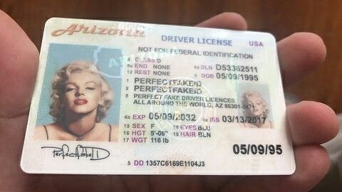 Id Arizona License Drivers Template
