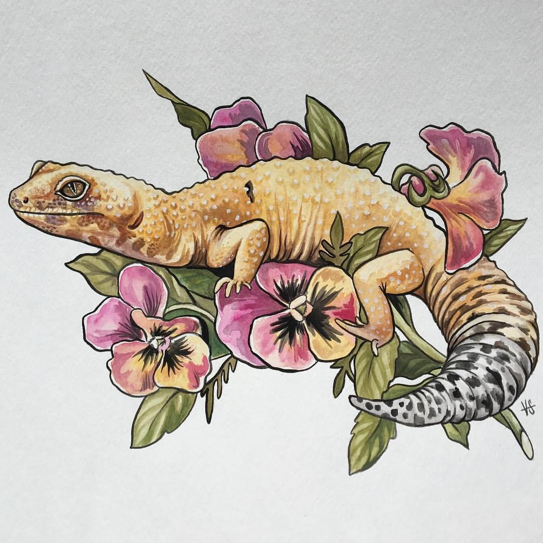 Pin by reptifiles on leopard geckos pinterest pansy tattoo find this pin and more on leopard geckos by reptifiles nvjuhfo Images