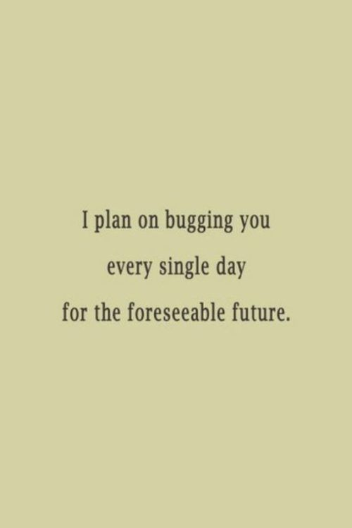 30 Funny Love Quotes Things That Make Me Laugh Funny