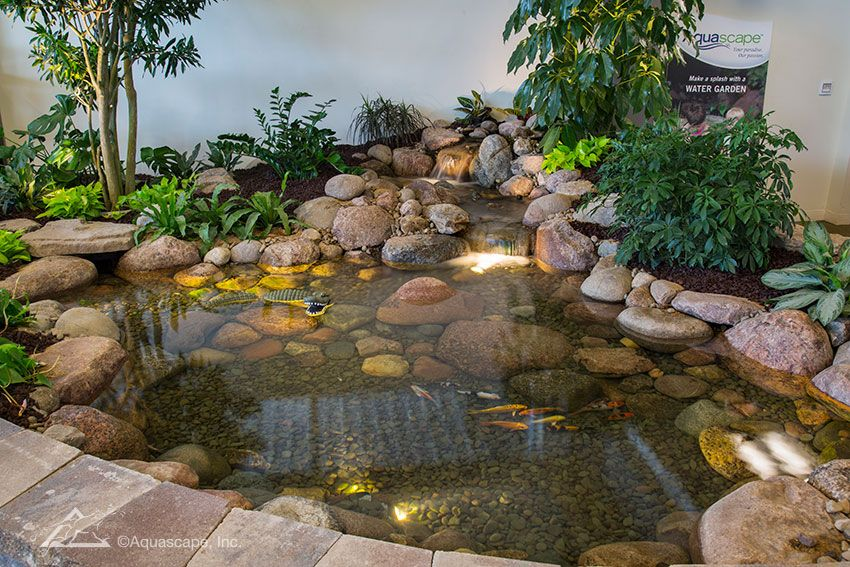 View examples of beautiful backyard ponds in our Water Gardening Store - View Examples Of Beautiful Backyard Ponds In Our Water Gardening