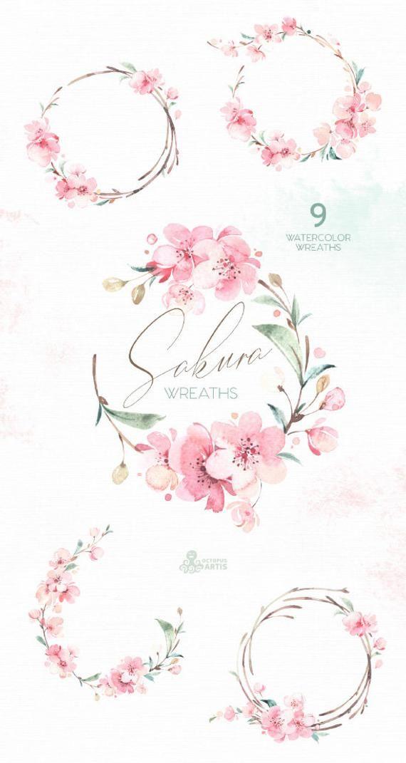Sakura Kronen. Blumen Aquarell Blume Clipart   Etsy