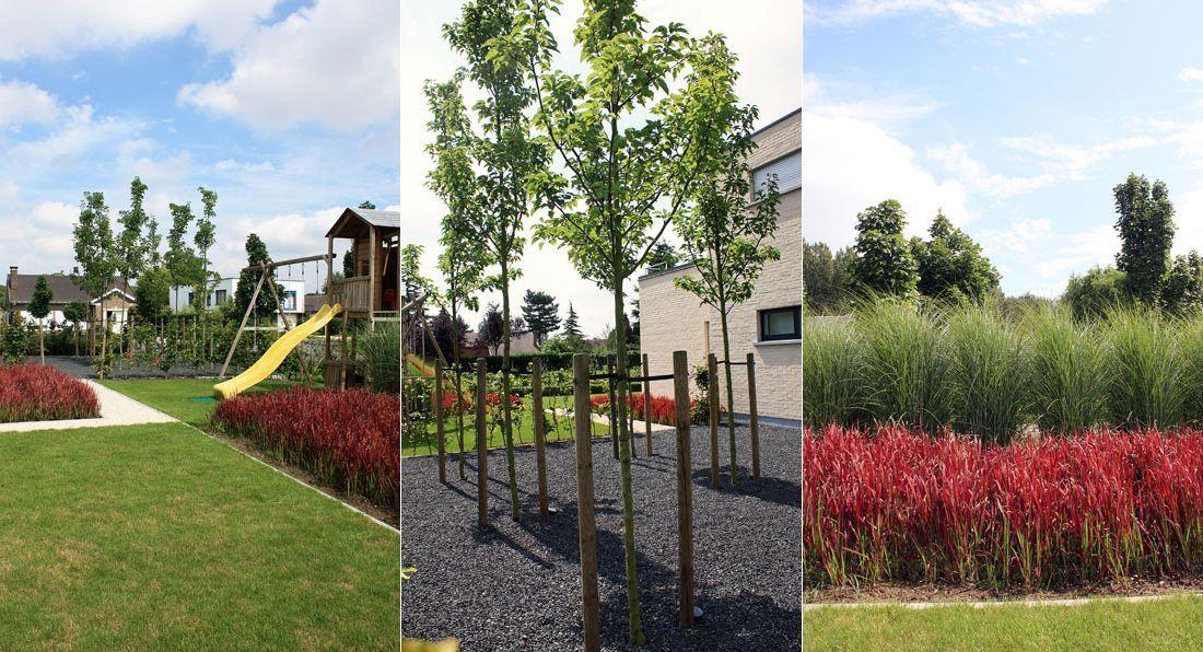 Moderne tuin met grassen google zoeken woning pinterest - Tuin met openlucht design ...