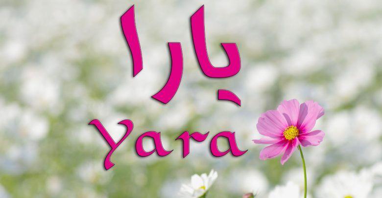 معنى اسم يارا وما حكم الاسم في الاسلام و صفات حاملة الاسم Name Wallpaper Name Pictures Wallpaper